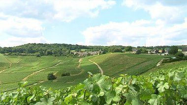 © Yves Biron / France 3 Champagne-Ardenne