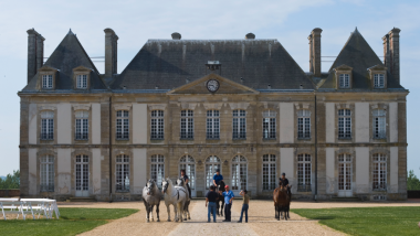 Image d'Archives du Haras du Pin / © Lenz, G./picture alliance / Arco Images G/Newscom/MaxPPP