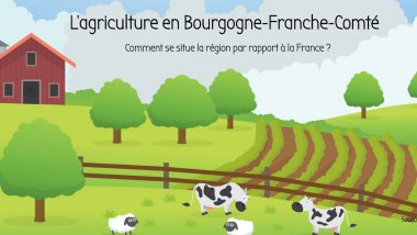 © NZ / France 3 Bourgogne
