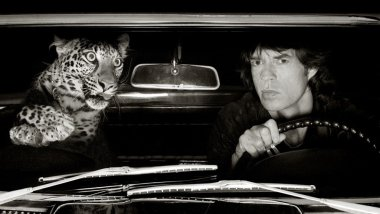 "Photographie prise par Albert Watson à Los Angeles en 1992, ""Jagger and Leopard in Car"" / © Albert Watson/Opiom Gallery"