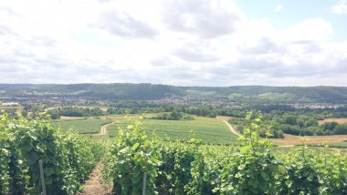 © Tiphaine Le Roux/ France 3 Champagne-Ardenne