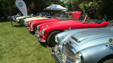 Expostion-Club France, Austin Healey / © Olivier Lopez France 3