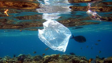 La pollution plastique menace la Méditerranée / © Mike Nelson/EPA/Max PPP