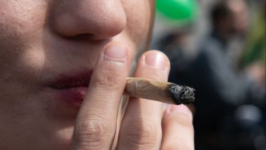 Le cannabis est illégal en France. / © Paul Zinken/dpa/picture-alliance/Newscom/MaxPPP