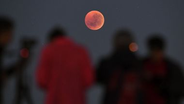 Une éclipse de lune en Australie / © WILLIAM WEST / AFP