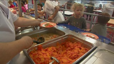 Gironde : une cantine scolaire passe au 100% circuits courts